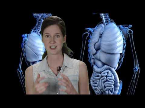 Schwangerschafts-Hypertonie ICD-10
