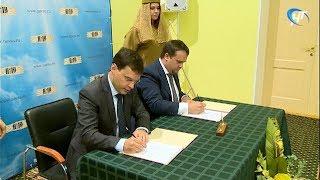 Правительство области заключило соглашение с федеральным Фондом развития интернет-инициатив