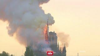 Verzweifelter Kampf Um Notre-Dame | N-tv