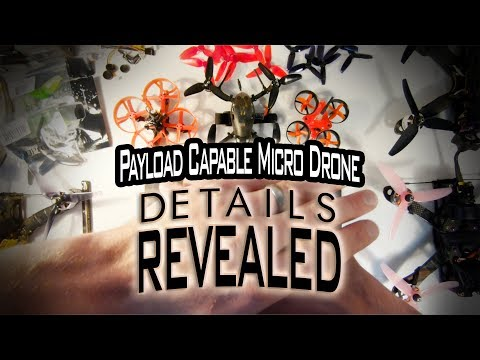 payload-capable-micro-drone--details-revealed