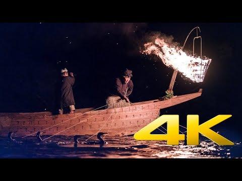 Ukai – необычная японская рыбалка при помощи бакланов | Видео и фото рыбалки с бакланами