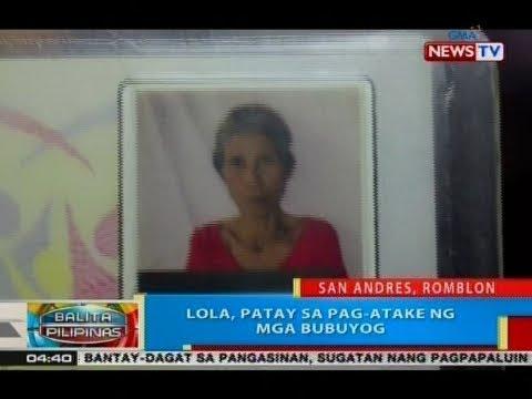 [GMA]  BP: Lola, patay sa pag-atake ng mga bubuyog