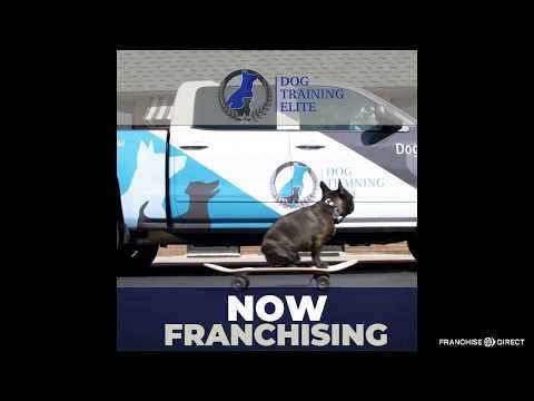 , title : 'Franchising with Dog Training Elite!