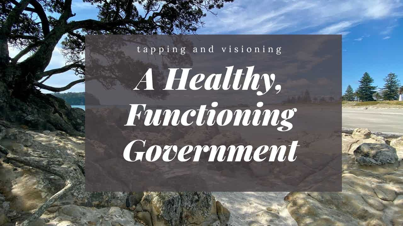 A healthy, functioning government