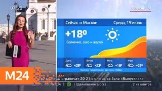 """Утро"": москвичей ждет жаркая погода 19 июня - Москва 24"