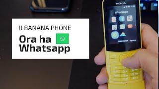 kaios whatsapp nokia 8110 - 免费在线视频最佳电影电视节目