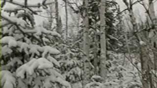 Walking in a Winter Wonderland - Christmas music video