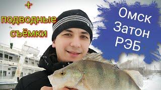 Омск отчет о рыбалке 2019