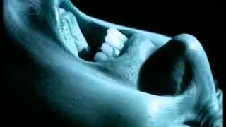Video Insomnia