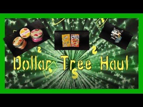 Dollar Tree Haul | Slide Show