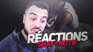 SHAY   NOTIF | REACTIONS AU CLIP !