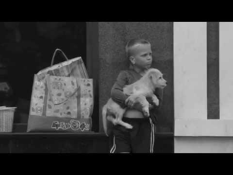 HAPPINESS (Аннотация: Очень трогательное видео о счастье)