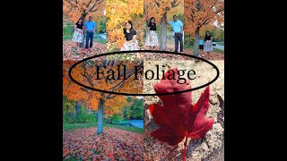 Fall in America | Fall in USA | Fall Foliage-2020