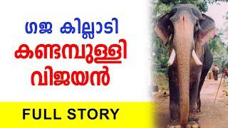 കണ്ടമ്പുള്ളി വിജയൻ Kandampully Vijayan   The Elephant Story   Nettipattam