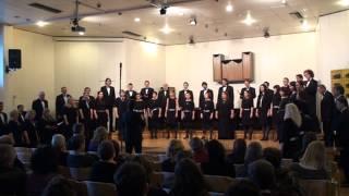 Društvo Mešani pevski zbor Postojna, Eric Whitacre (1970): LUX AURUMQUE