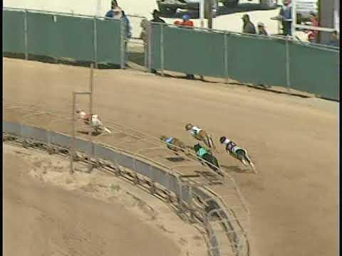 Race 59