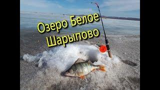 Платная рыбалка фрязево бывший совхозный