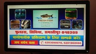 how to start biofloc fish farming in india - Kênh video giải