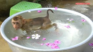 Cute Baby Luna Happy Bathed And Swimming Big Bowl