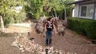 The Crooked Feather pneumatic articulating wings