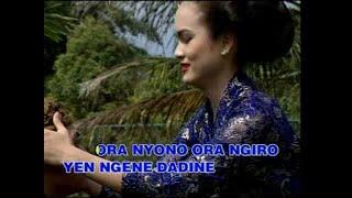 Download lagu Mawar Biru Nurhana Mp3