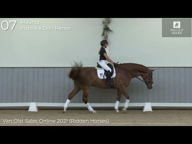 Mauritz under saddle