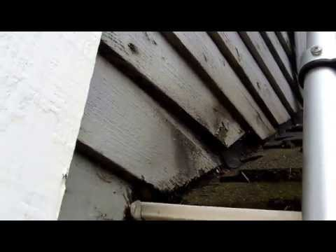 You can see in this video how the water gets into the roof step flashing and then runs OUTSIDE of the gutter, behind the siding, and is rotting the house.