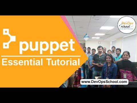 Puppet Fundamental Tutorials with Basic Demo by Raman in 2020 ...