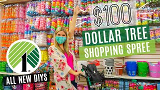$100 Dollar Tree Shopping Spree!! + DIYs for SPRING 2021