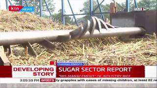 Sugar Sector Report: Consumers to pay Sugar Levy, privatization listed as a priority