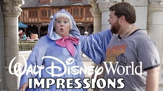 The Fairy Godmother Knew Who I Was?!? - Disney World Impressions
