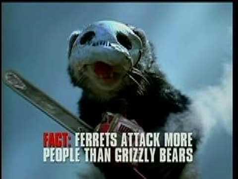 Morderczy potwór atakuje