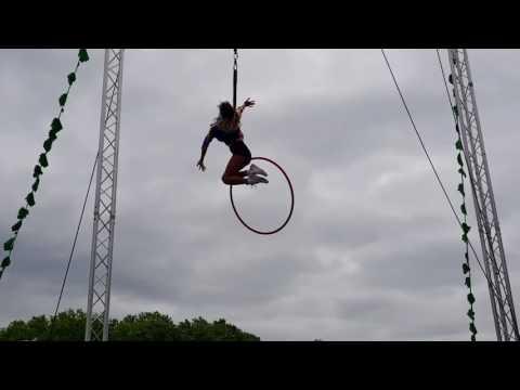 Harley Quinn aerial hoop performer for hire