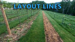 How-to Lay-Out and Plant a Vineyard Row - Part 1