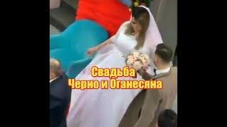 Свадьба Саши Черно и Иосифа Оганесяна. Дом2 новости и слухи