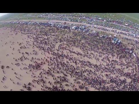 12 мың адам қатысқан Сарыағаштағы көкпар Гиннестің рекордтар кітабына енеді