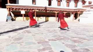 preview picture of video 'Monk dance at Hemis Monastery'