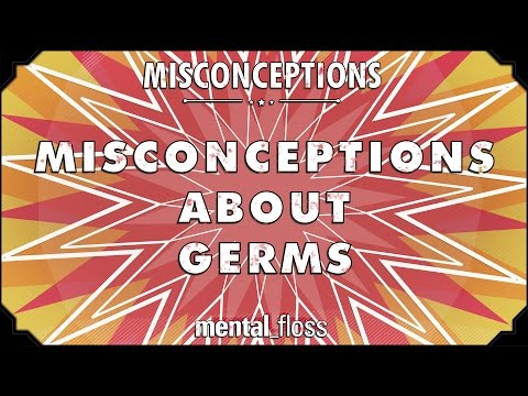 This Video Debunks 10 Popular Misconceptions About Germs And Hygiene