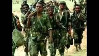 Oromo - Revolutionary Song 'Ka'i Qeerroo' Caalaa Bultuume 2014