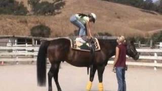 Calero Ranch Horse Camp - 2005