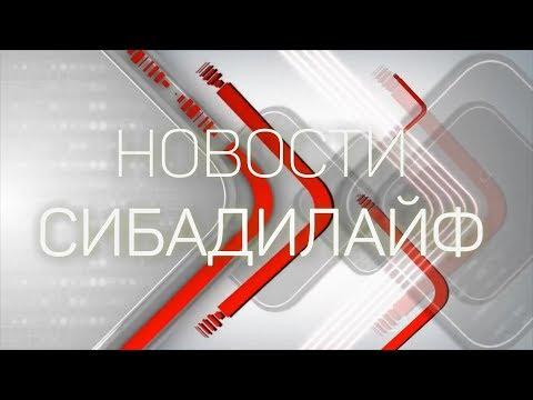 Олег Николаевич Смолин в СИБАДИ