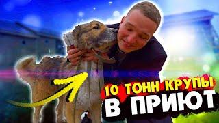 EDWARD BIL / КУПИЛ 10 ТОНН КРУПЫ / ОТВЁЗ В ПРИЮТ ДЛЯ ЖИВОТНЫХ