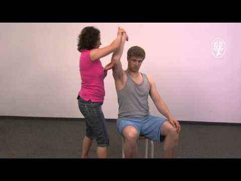 37 Wochen der Schwangerschaft Rückenschmerzen