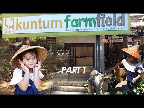 Video Wisata edukasi anak bermain sambil belajar, kuntum farm field bogor Indonesia bersama Ismie part 1