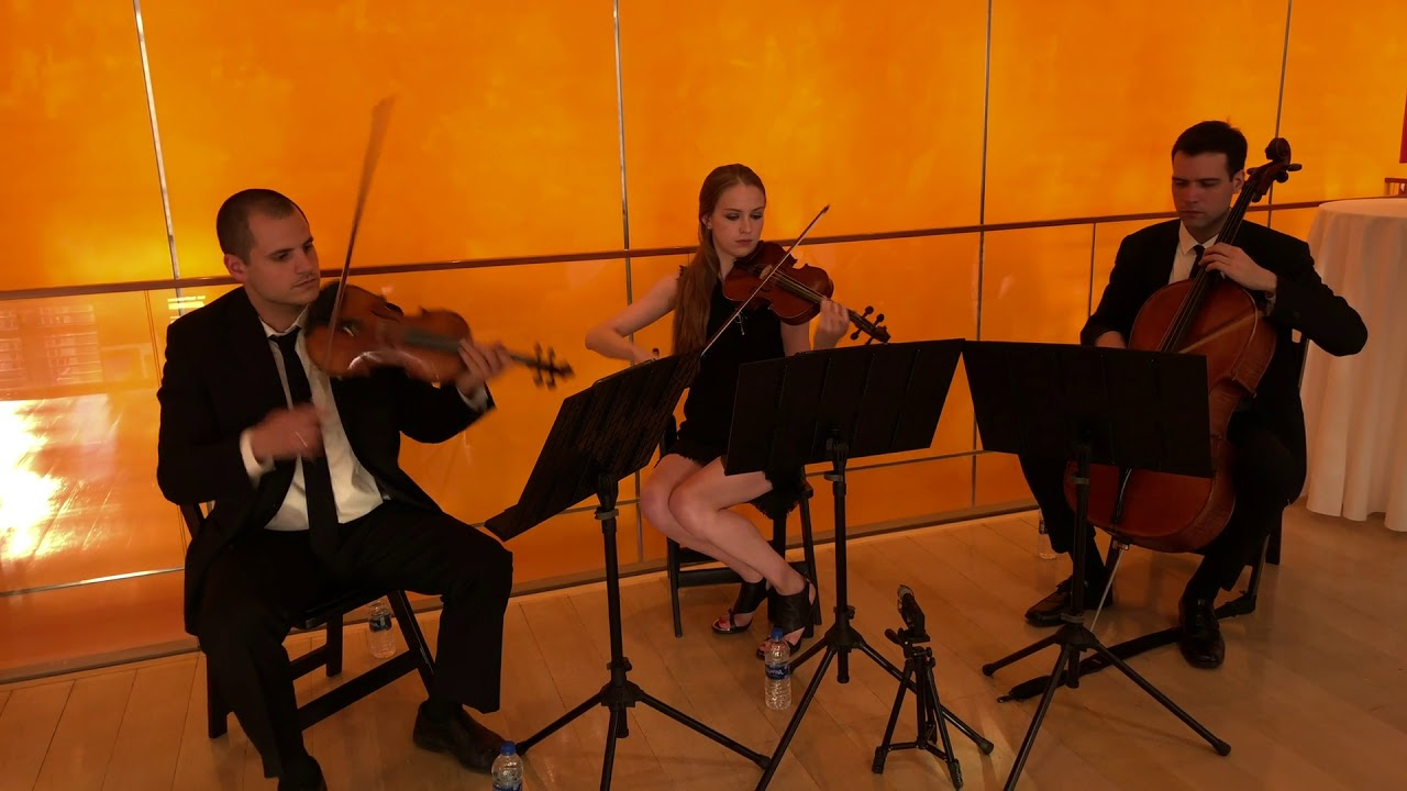 Hire SPN Events - String Quartet in New York City, New York