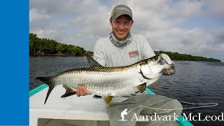 preview picture of video 'Fly fishing for tarpon in the Yucatan in Mexico'