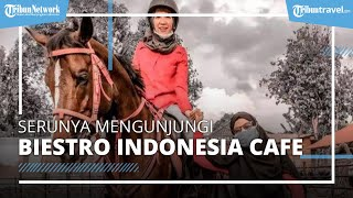 Serunya Berkunjung ke Biestro Indonesia Cafe, Wisata Berkuda Hanya Rp20 Ribuan