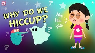 Why Do We Hiccup?   The Dr. Binocs Show   BEST LEARNING VIDEOS For Kids   Peekaboo Kidz