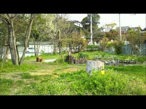 福津市のしらぎく幼稚園|未就園児・預かり保育・園児募集