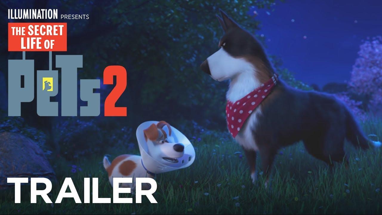 Trailer för Husdjurens hemliga liv 2